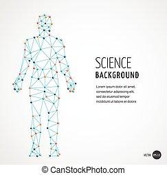 dna, symbol, molekuła, genetyczny, dna, budowa, człowiek