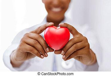 doktor, serce, samiczy afrykanin, czerwony
