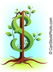 dolar, drzewo