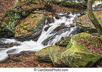 dolina górska, jesień, whitewater, leigh
