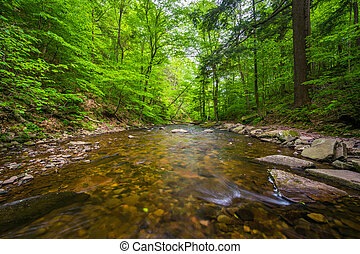 dolina górska, park, las, zatoczka, stan, soczysty, pennsylvania., kuchnia, ricketts