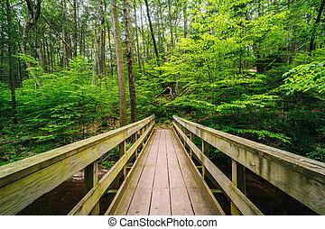 dolina górska, park, stan, most, drewniany, pennsylvania., ciągnąć, ricketts