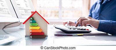 dom, skuteczny, energia, rewizja