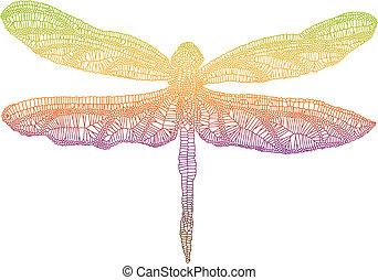 dragonfly, barwny