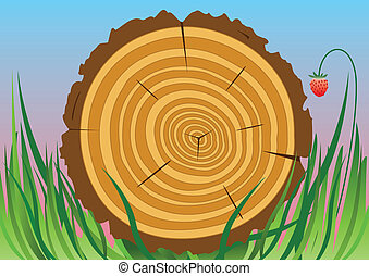 drewniany, cięty