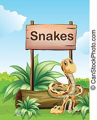 drewniany, niezależnie, szyld, węże, dwa