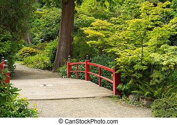 drewniany, stopa, japończyk, most