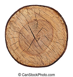 drewno, cutted, drzewo, struktura, wektor, pień