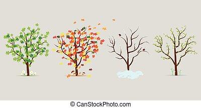 drzewa., cztery, wektor, projektować, płaski, komplet, pory
