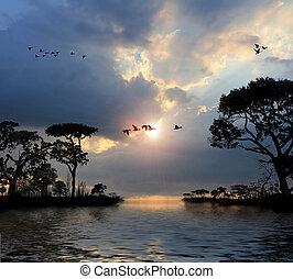 drzewa, niebo, przelotny, jeziora, zachód słońca, ptaszki