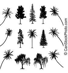 drzewa, podstawy, dłonie
