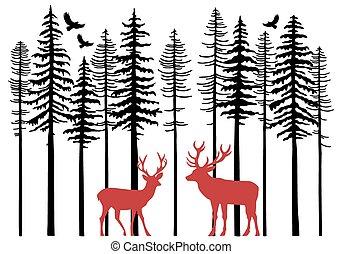 drzewa, renifer, wektor, jodła