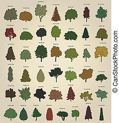 drzewa., wektor, komplet, retro