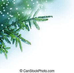 drzewo, brzeg, boże narodzenie