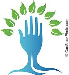 drzewo., eco, symbol, ręka, wektor, zielony, logo