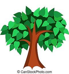 drzewo, ilustracja, liście, wektor, zielony, wiosna