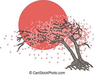 drzewo, japończyk, ilustracja
