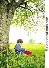 drzewo, książka, pod, czytanie, dzieci, szczęśliwy