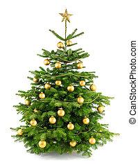drzewo, soczysty, upiększenia, złoty, boże narodzenie