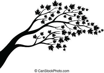 drzewo, sylwetka, klon