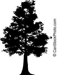 drzewo, (vector)