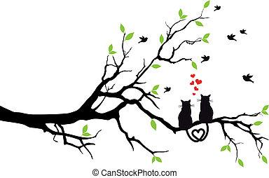 drzewo, wektor, miłość, koty