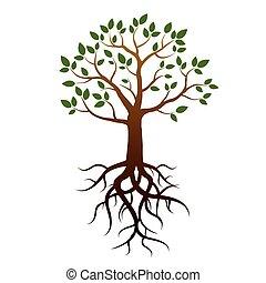 drzewo, wektor, zielony, podstawy, liście