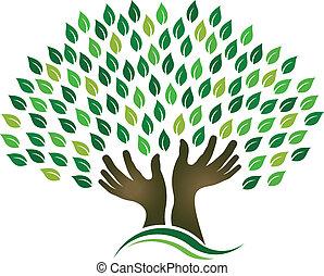 drzewo, zbieranie chmielu, siła robocza
