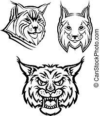 dziki, bobcat, ryś, albo, maskotki