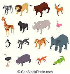 dziki, isometric, zwierzęta, ilustracja