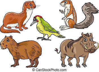 dziki, komplet, zwierzęta, rysunek, ilustracja