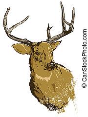dziki, wektor, jeleń, ilustracja