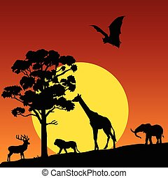 dziki, wektor, zwierzę, natura