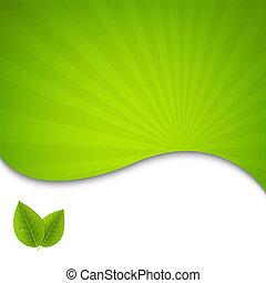 eco, afisz, liście, zielony