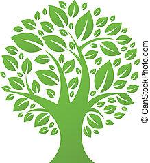 eco, drzewo