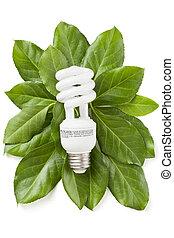 eco, energia, pojęcie, zielony
