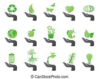 eco, ręka, zielony, ikony