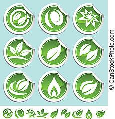 eco, zielony, majchry