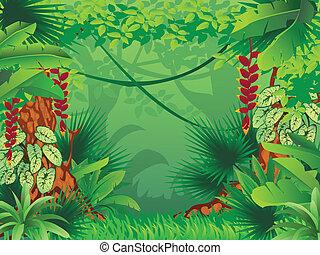 egzotyczny, tropikalny las