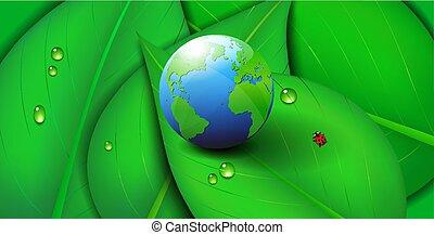 ekologia, liść, symbol, zielone tło, ziemia, świat, ikona