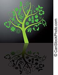 ekologia, odbicie drzewa