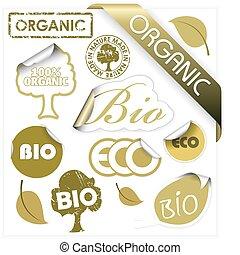 elementy, komplet, eco, bio, wektor, organiczny