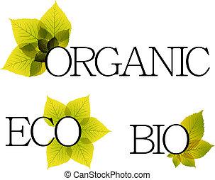 elementy, organiczny, eco, etykiety, bio, kwiatowy
