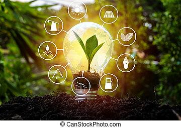energia, świat, źródła, odnawialny