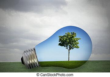 energia, przyjacielski, środowiskowo