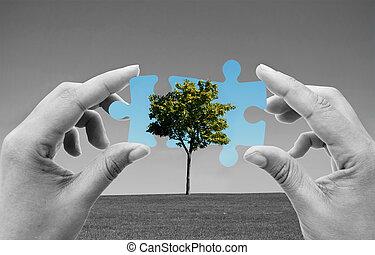 energia, zielony, rozłączenia