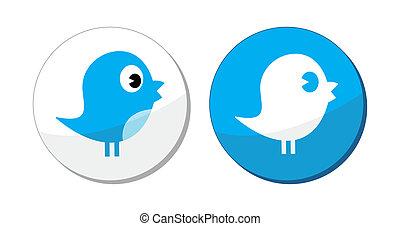etykieta, błękitny, towarzyski, ptak, media, wektor