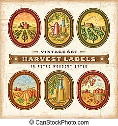 etykiety, rocznik wina, komplet, żniwa, barwny