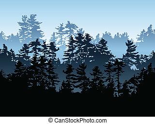 evergreen, las