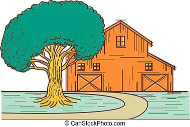 farba mono, stodoła, amerykanka, drzewo lina, dąb